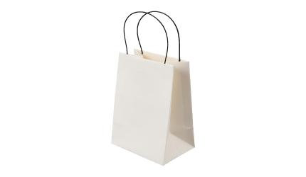 paperbag_illustration-03
